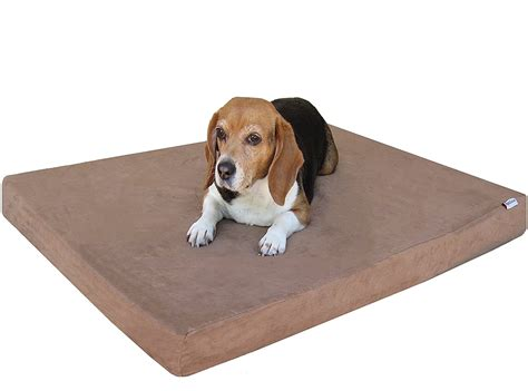 tempur pedic dog beds orvis dog beds amusing tempur pedic dog bed tempur pedic