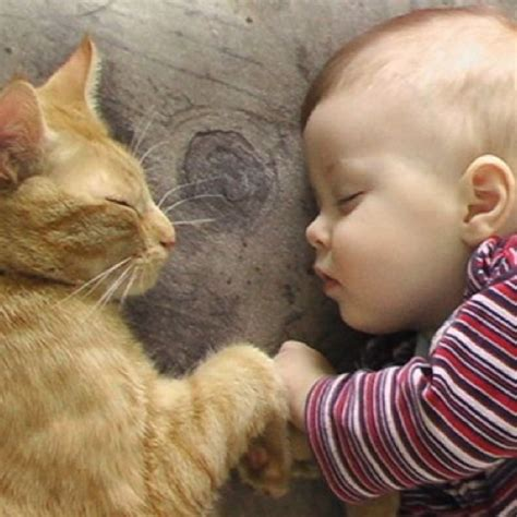 Kids With Cute Animals. Cute Pictures!   Cute animal