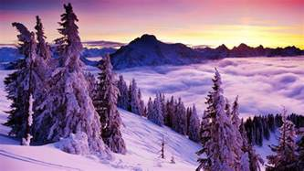 beautiful winter winter landscapes wallpapers wallpaper cave
