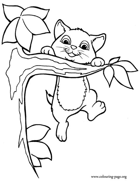 cute cat drawings coloring pages
