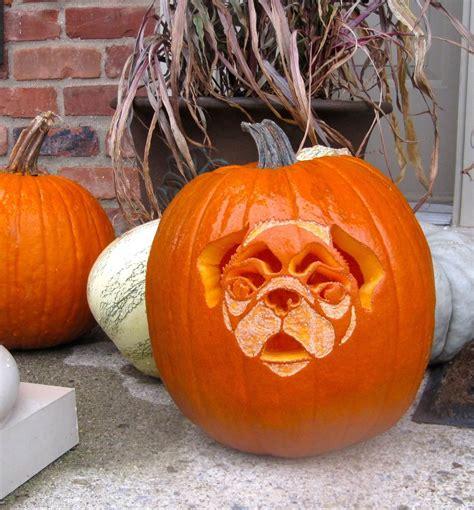 free pug pumpkin carving stencils pumpkin carving stencil ideas