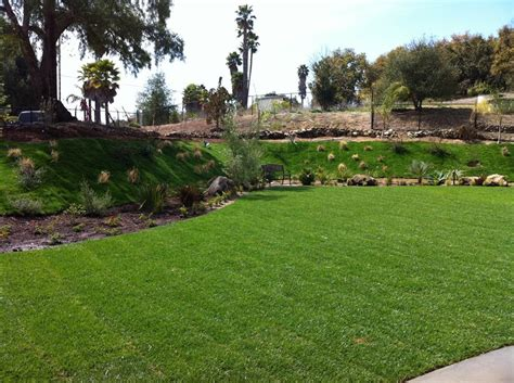 cost  install maintain  lawn landscaping network