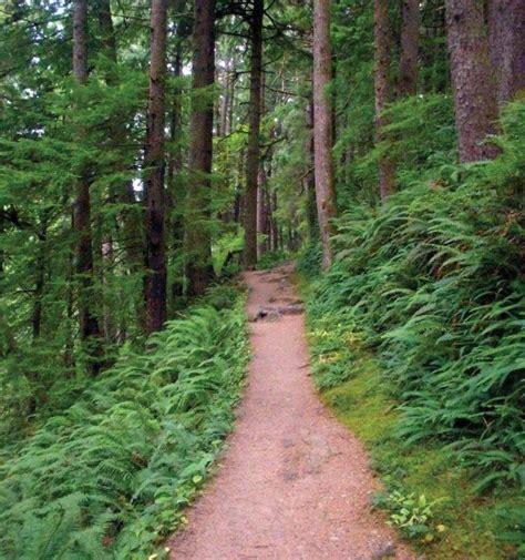 best 28 cing near oswald west state park oswald west