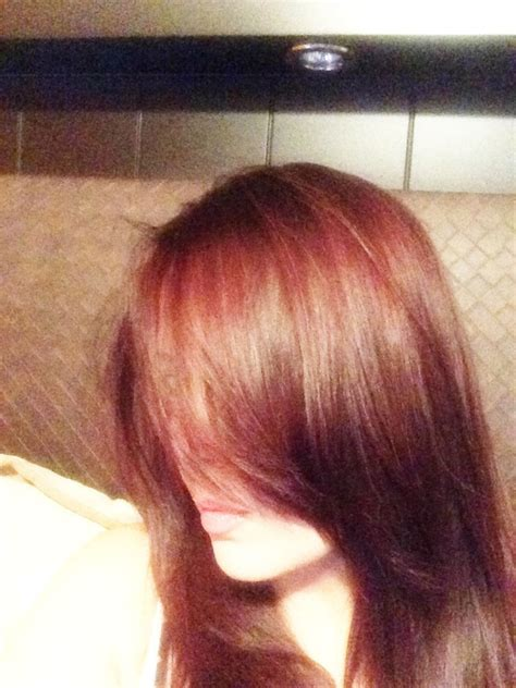 4r hair color argan hair color 4r medium brown pelo