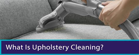 upholstery cleaners brisbane guide to carpet cleaning brisbane
