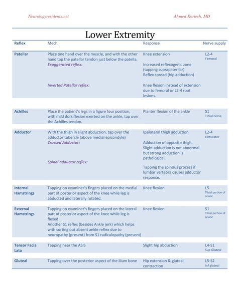 neurological template list of synonyms and antonyms of the word neuro template