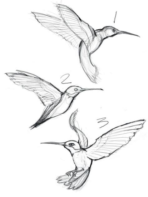 how to draw a hummingbird on a flower de 25 bedste id 233 er inden for flower sketches p 229 mennesketegning naturtro tegninger