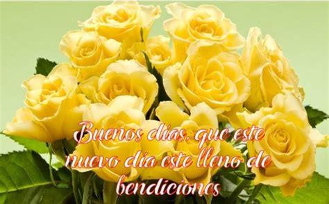 imagenes flores amarillas con frases preciosas im 225 genes de rosas amarillas con frases de buenos