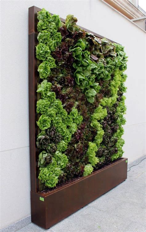 Vertical Wall Gardens The 25 Best Vertical Garden Wall Ideas On