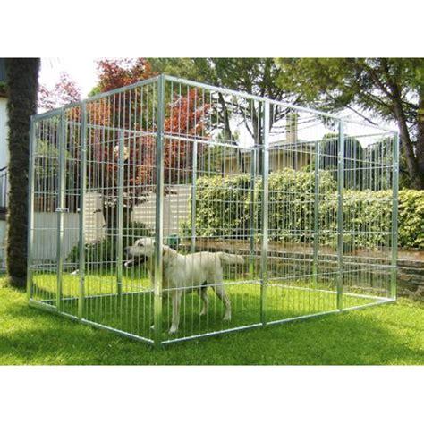 box auto per cani box per cani bellotto arredo giardino treviso veneto