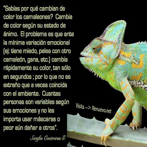 imagenes chidas que cambian de color por qu 233 cambian de color los camaleones