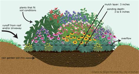 Berm Homes How To Build A Rain Garden Unc Tv Science