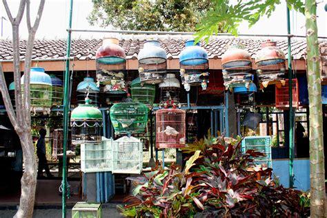 file bird market building in yogyakarta 6265682015 jpg