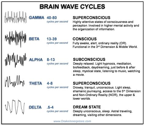 Brain Wave levels of consciousness in the 3rd dimension the brain