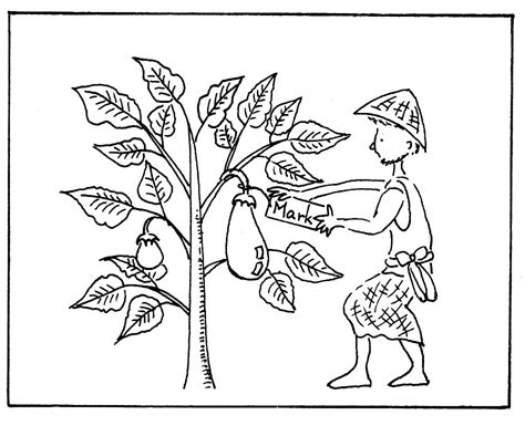 mustard tree coloring page parable of the mustard seed coloring page az coloring pages