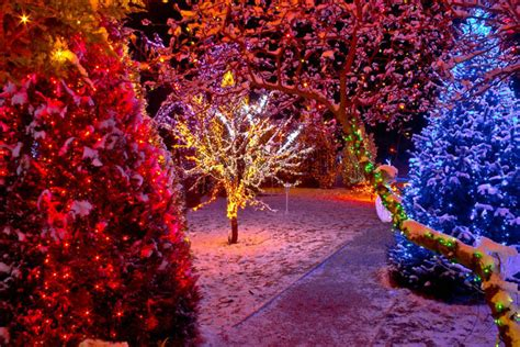 beautiful outdoor christmas lights pictures photos and