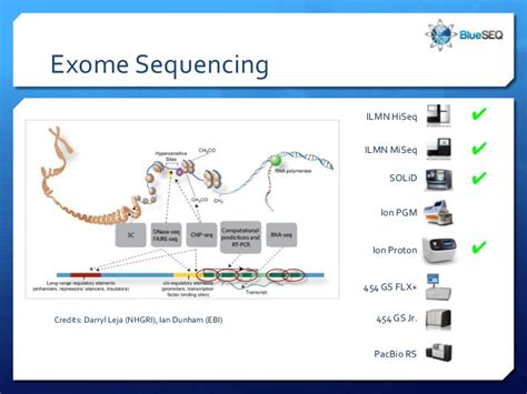 exome sequencing illumina ngx sequencing 101 platforms
