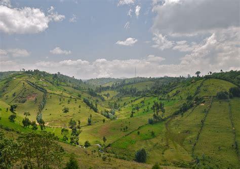 beautiful oromia week advocacy  oromia