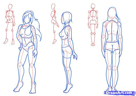 Drawing Bodies by How To Draw Figures Figures Step By Step