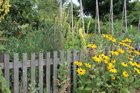 wilder garten 17 best images about border design on gardens