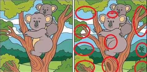 Can You Search By City Can You Find 10 Or More Differences Puzzle Answer