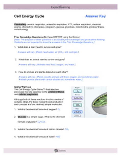 Cell Energy Cycle Gizmo Worksheet Answers gizmos cell energy