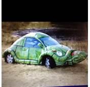 Turtle Car  Animals &amp Funnies Pinterest