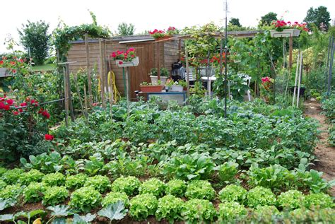 Image De Jardin by G 233 Rer Au Mieux L Eau Au Jardin 1 Pr 233 Venir Les D 233 G 226 Ts De