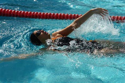 imagenes motivacionales de natacion natacion im 225 genes