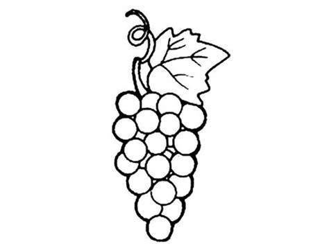 imagenes uvas para pintar uvas em cacho colorir desenhos