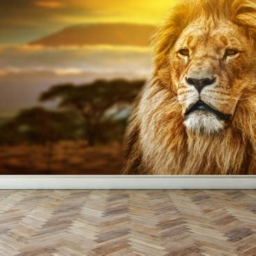 home interior lion picture wall mural lion on savanna peel and stick repositionable