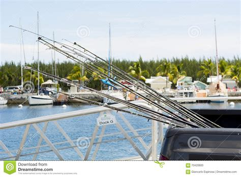 fishing charter boat business plan pay for essay and get the best paper you need fishing