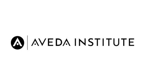 aveda institute dallas reviews hair highlights 1000