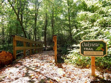 You Need To Try Feeding Wild Chickadees Near Cleveland Beech Creek Botanical Gardens