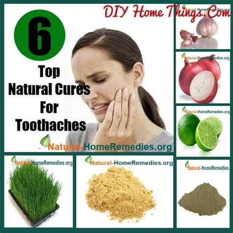 herbal medicine and home remedies diy home things