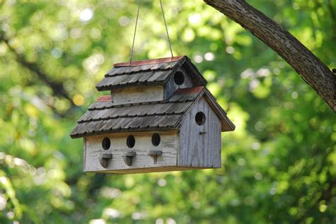 decorative bird houses decorative bird houses for indoor bird cages