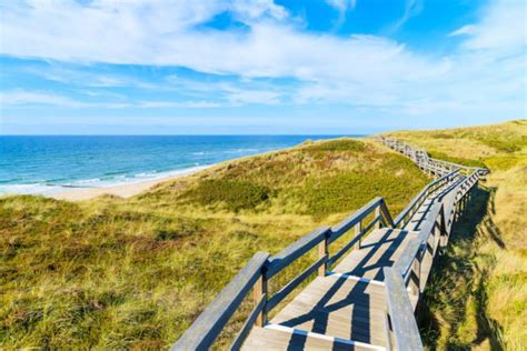sylt island sylt the largest island in north frisia tourism de
