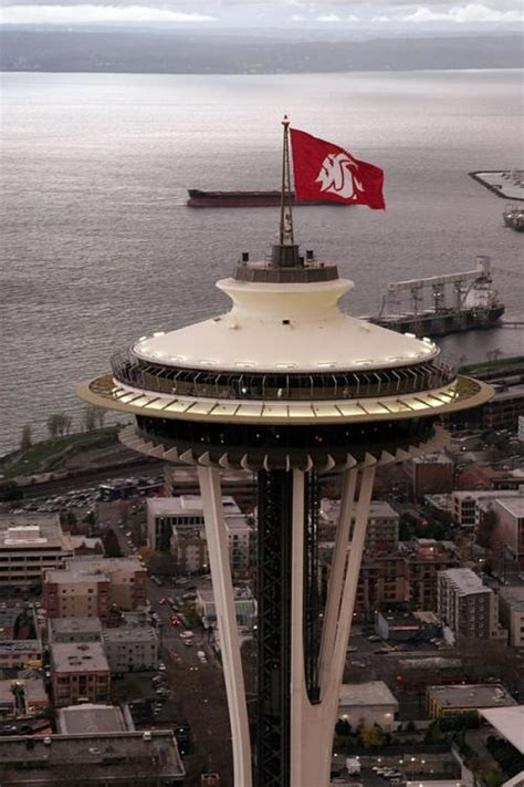 spaceship cus apple 17 best images about wsu cougars on washington state the flag and cus d amato