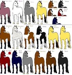 dun horse color images