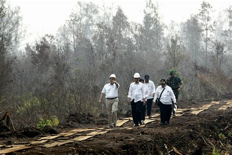 Pisau Hutan antisipasi kebakaran hutan dan lahan 2017 berikut arahan