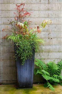 1000 images about patio garden ideas on pinterest large flower pots flower pots and