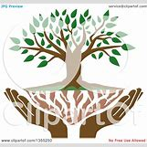 Family Tree Roots Background   1080 x 1024 jpeg 117kB