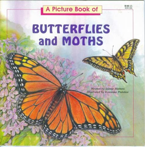 the of the moths books a picture book of butterflies and moths joanne mattern