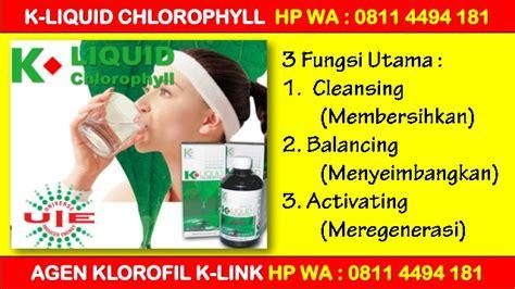 K Liquid Chlorophyll Klorofil Agen Distributor Termurah Grosir promo harga distributor klorofil k link hp wa 0811 4494 181promo