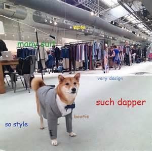 Best Of Doge Meme - the best of the doge meme
