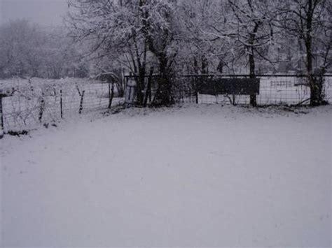 Jk S Backyard Llc Backyard Foto Di Bogata Tripadvisor