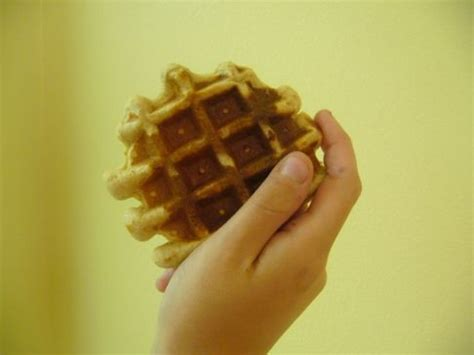 whole grains with high protein whole grain high protein waffles recipe sparkrecipes