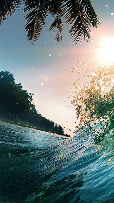 wallpaper wave   wallpaper  ocean palms sun