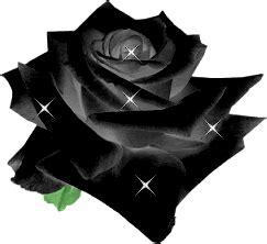 imagenes de flores negras reales gifs animados de rosas negras gifmania