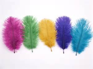 Peacock Decorations For Home Ostrich Feathers 5 Pack Dyed Feathers For Millinery